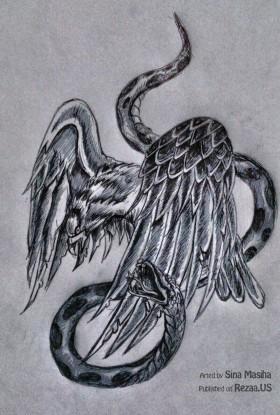 مار و عقاب – طراحی سینا